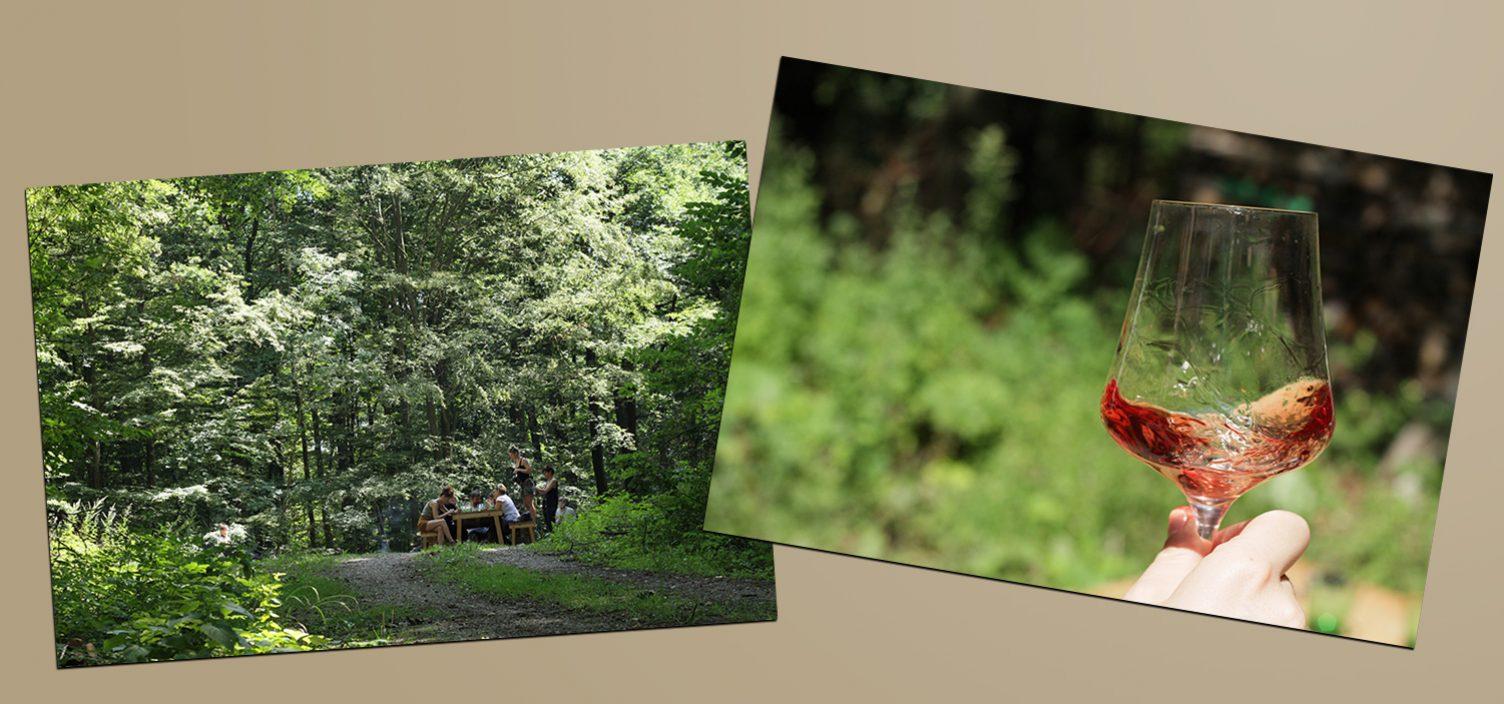 Zwei Aufnahmen: Links Wald, rechts Hand mit Weinglas mit Wiesenhintergrund.