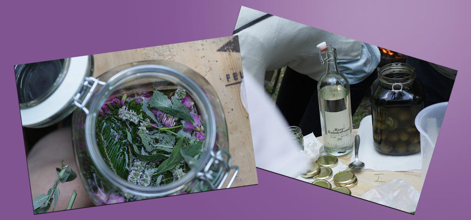 Zwei Aufnahmen: Links Foto in Vogelperspektive von Wermut im Einmachglas, rechts Kräuterbrand in Glasflasche und Einmachglas.